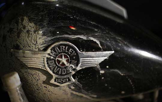 Harley-Mud