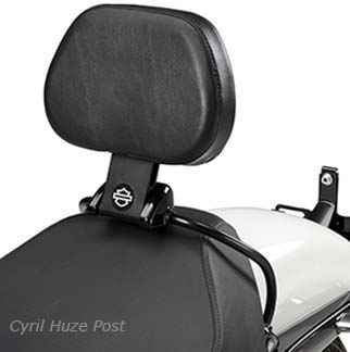Sportster-Detachable-Backrest1