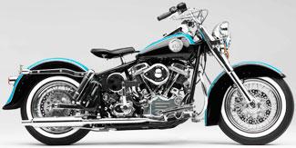 Custom T Rex Motorcycle